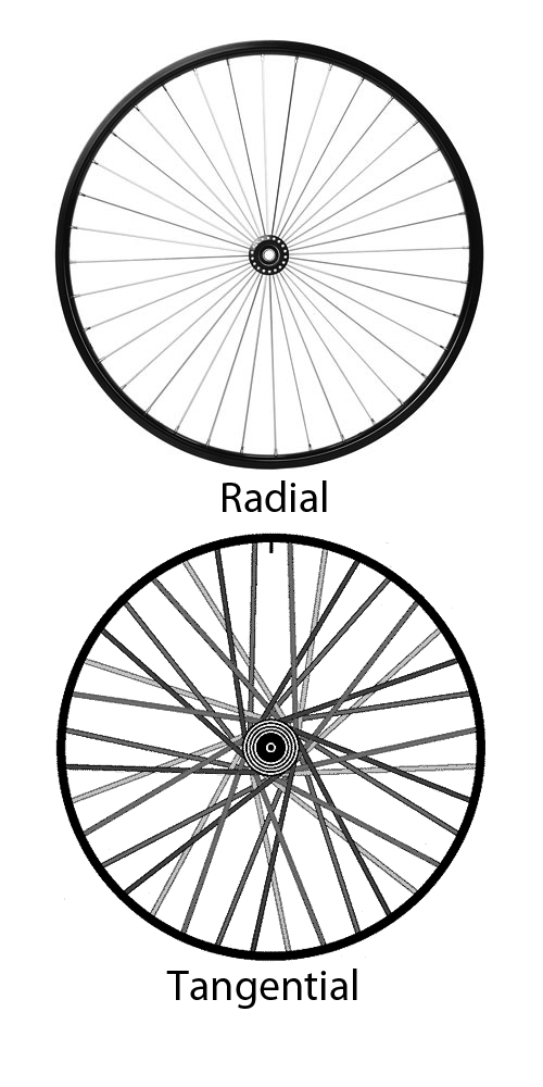 radial tangential2